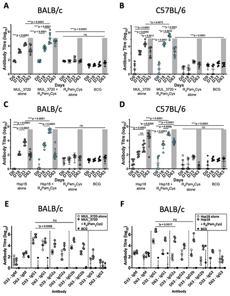 Antibody titres from BALB/c and C57BL/6 mice immunized with recombinant MUL_3720 or Hsp18 linked to R4Pam2Cys lipopeptide adjuvant.