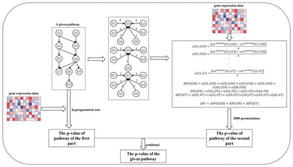 The workflow of SPFA method.