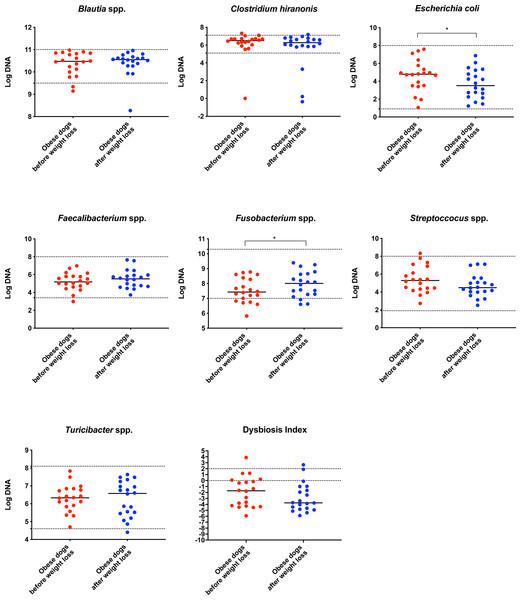 Dysbiosis Index and quantitative PCR results for Blautia spp., C. hiranonis, E. coli, Faecalibacterium spp., Fusobacterium spp., Streproccocus spp., and Turicibacter spp.