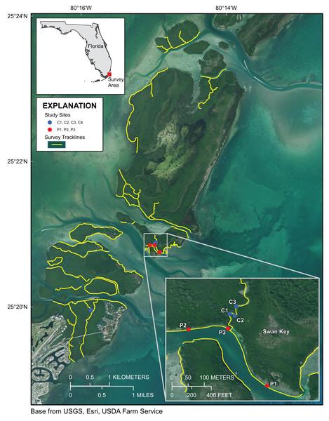 Upper Florida Keys surveys in the vicinity of Card Sound.