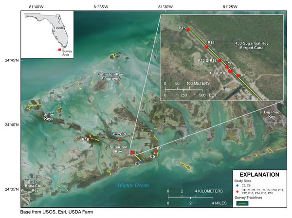 Lower Florida Keys Surveys.