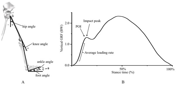 Scheme of (A) lower extremity kinematic and (B) impact force variables.