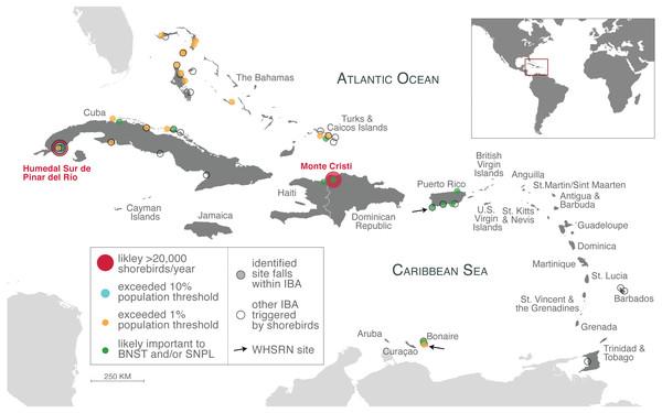 Important shorebird sites in the insular Caribbean.