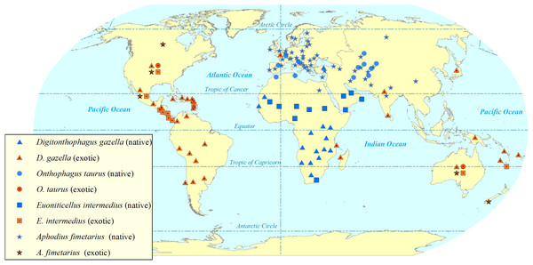 Map showing the global (native and exotic) distribution of four invasive dung beetle species.