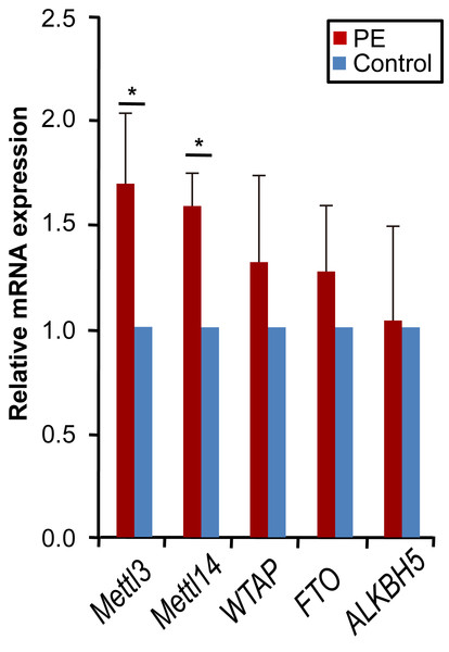 METTL3 and METTL14 were up-regulated in PE.