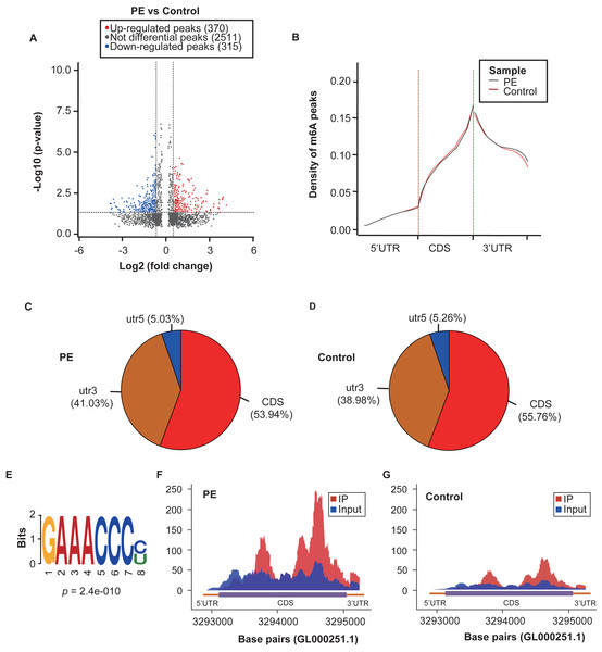 Overview of the m6A methylation landscape in the preeclampsia and control samples.