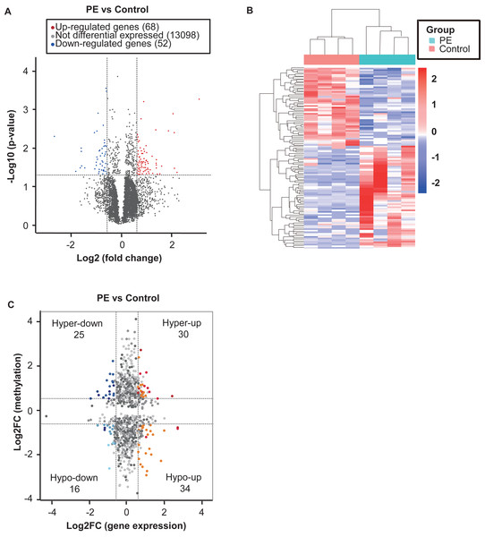 Conjoint analysis of m6A-RIP-seq and RNA-sequencing data for preeclampsia and control samples.