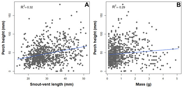 Scatterplot depicting associations between perch high and natural history traits of B. pandi.