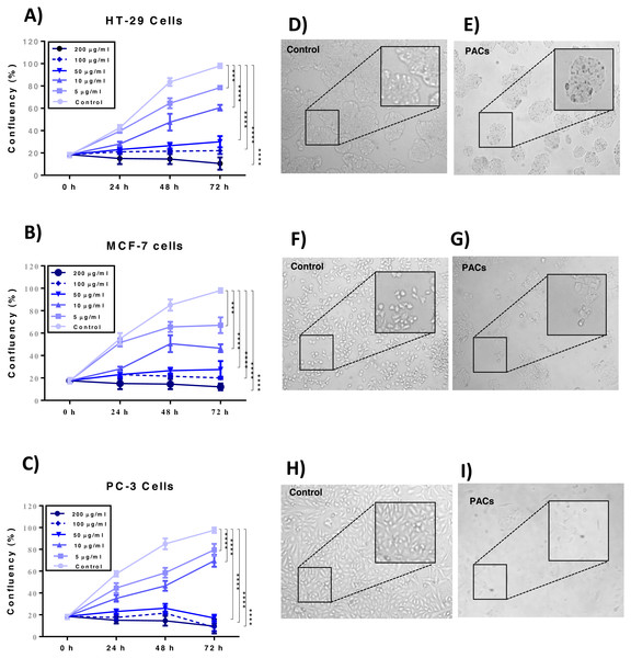 Proliferation of HT29, MCF-7, and PC-3 cells after PACs treatment.