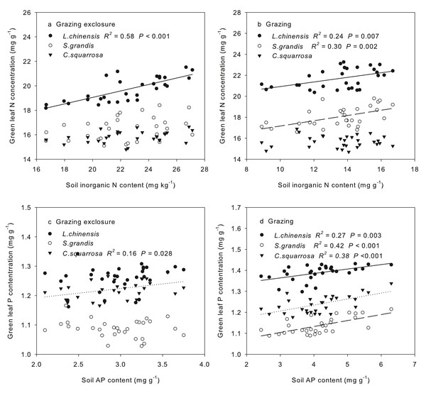 Spatial dependence of green leaf nitrogen concentrations on soil inorganic N content, and spatial dependence of green leaf phosphorus content on soil available phosphorus content.