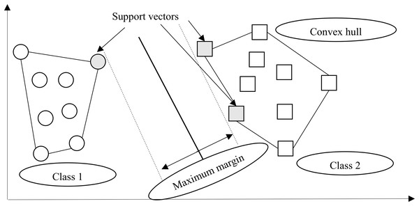Margin hyperplane, support vector, and convex hull.