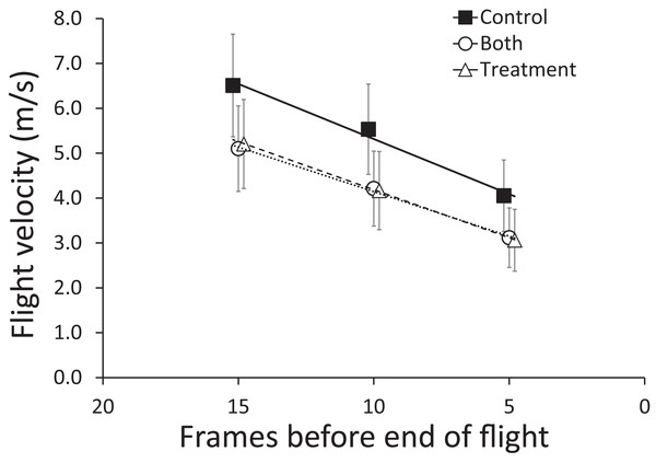Mean (±95% CI) flight velocity across sequential five frames of flight (15–11, 10–6, 5–1, counting from the end of flight) for brown-headed cowbirds.