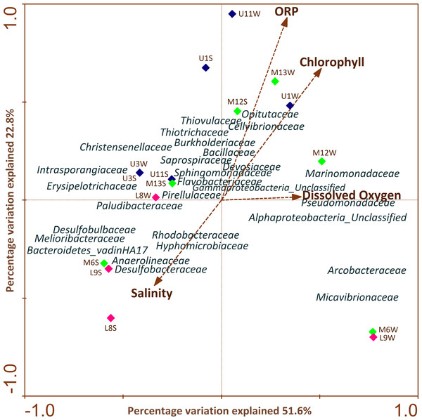 CCAs of bacterial community structure from column water and sediment samples using environmental variables.