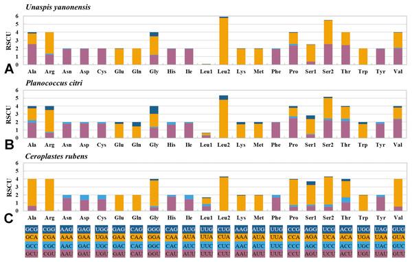 Relative synonymous codon usage (RSCU) of PCGs in Unaspis yanonensis, Planococcus citri and Ceroplastes rubens.
