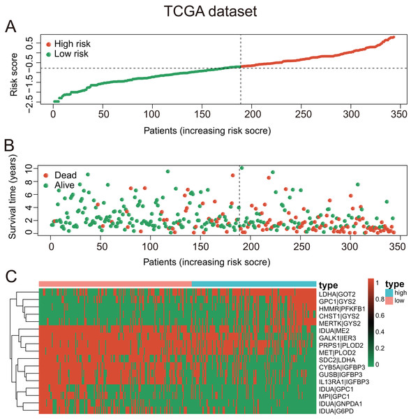 The GRGPs signature analysis of patients with HCC in TCGA dataset.