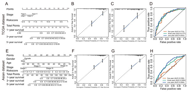The evaluation of prognostic GRGPs signature in the TCGA dataset and the Asian dataset.