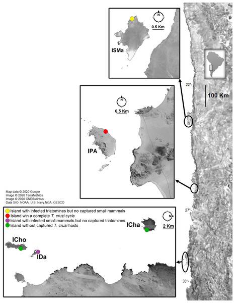 Sample localities of small mammal and triatomine collection.