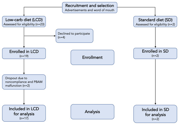 Flow chart of participants in each stage of the study.