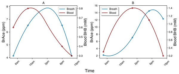 Examples of the temporal lag between blood BHB and BrAce.