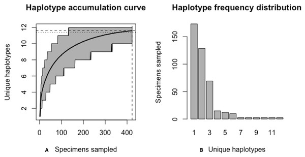 Final graphical output of HAC.sim() for scalloped hammerhead (S. lewini) having three dominant haplotypes.