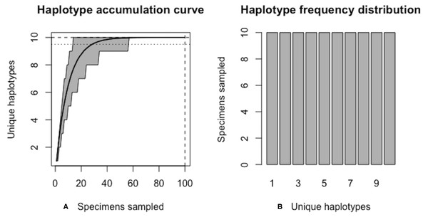 Graphical output of HAC.sim() for a hypothetical species with equal haplotype frequencies.