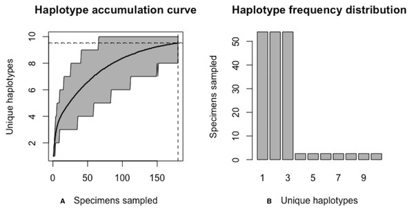 Final graphical output of HAC.sim() for a hypothetical species having three dominant haplotypes.