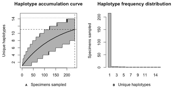 Initial graphical output of HAC.sim() for a real species (Lake whitefish, C. clupeaformis) having a single dominant haplotype.