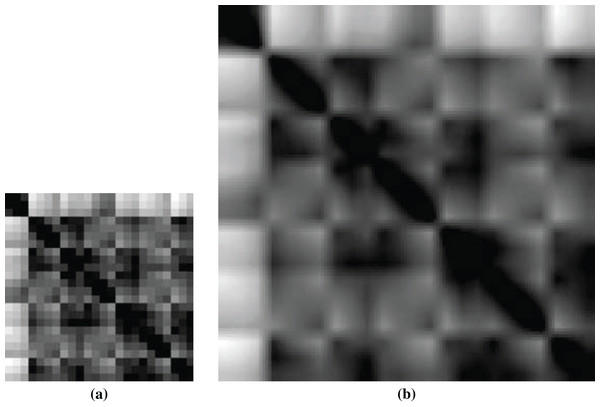 Images of ligand structures: (A) non-scaled and (B) scaled.