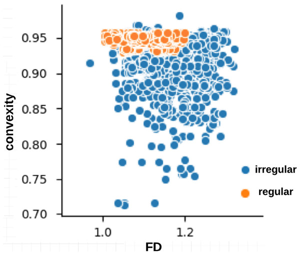 Relationship between fractal dimension and convexity values for regular (label:1) and irregular (label:0) skin lesion borders in the training dataset.