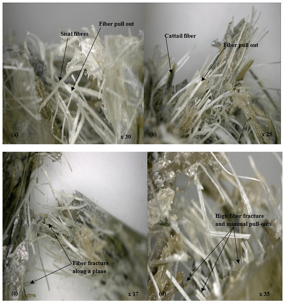 Micrographs of polyester hybrid composites showing the fracture surfaces in the composites.