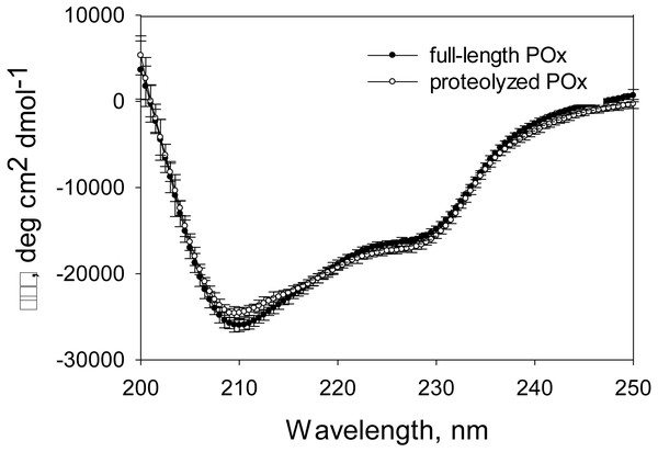 CD spectra measured for full-length and proteolyzed POx (after 5.5 hours of trypsinolysis) in 12.5 mM sodium phosphate buffer, pH 7, 125 mM NaCl.