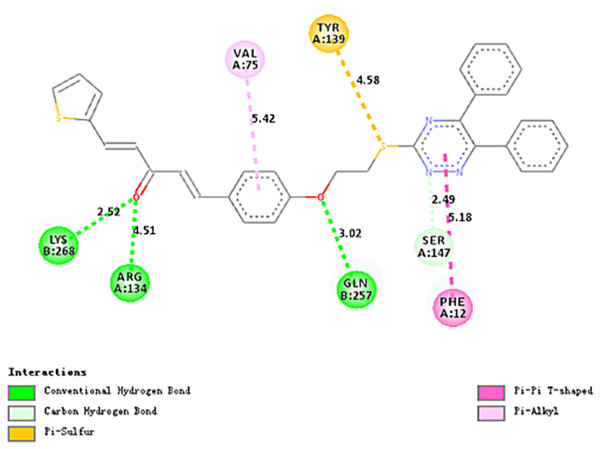 Two-dimensional diagrams of compound 4a docked with TMV-CP.