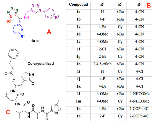 Modeled co-crystallized and 1,5 Disubstituted tetrazole 1,2,3-triazoles.