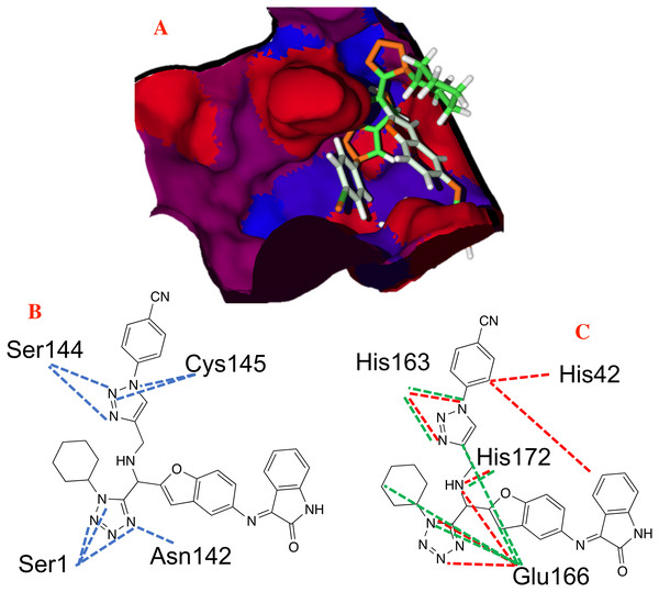 Non-covalent interactions between p8 and the CoV-2-MPro protein.