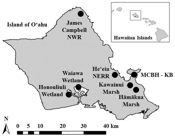 Island of O'ahu, Hawai'i, USA.