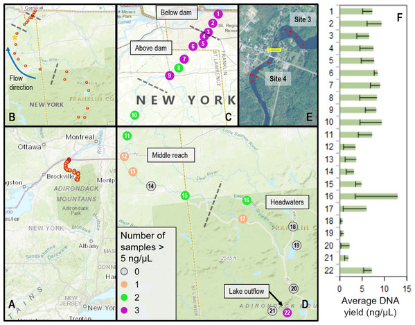 Sampling locations within the St. Regis River watershed and DNA yield.