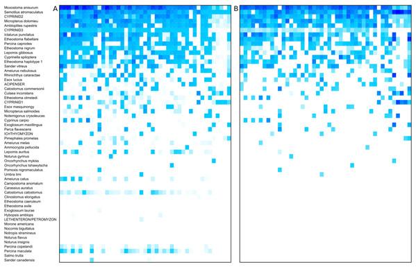 Heat map of taxon abundance by sample.