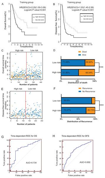 The prognostic value of lncRNA-based risk model in training group.