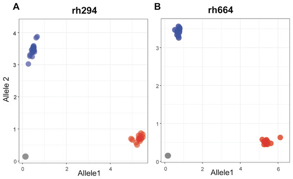 Allelic discrimination plots showing the rhAmp genotyping assays rh294 (A) and rh664 (B) using 52 samples, 26 genotypes in duplicate.