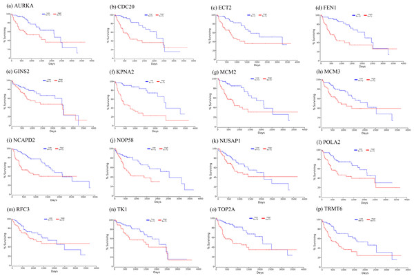 Significant correlation between hub genes expression and survival.
