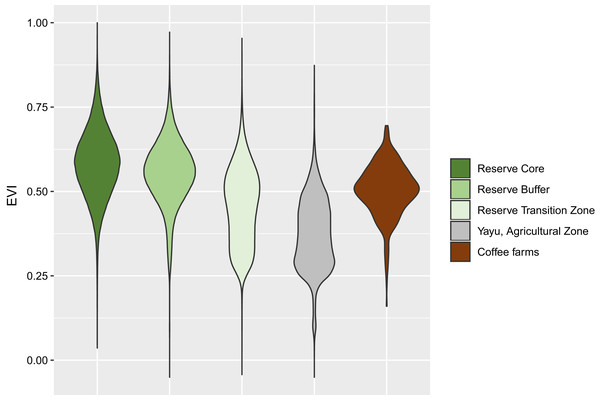 Violin plot of EVI values for Yayu Coffee Forest Biosphere Reserve and coffee farm locations.