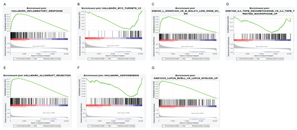 GSEA for samples with high PTPRC/CD19 expression and low expression.