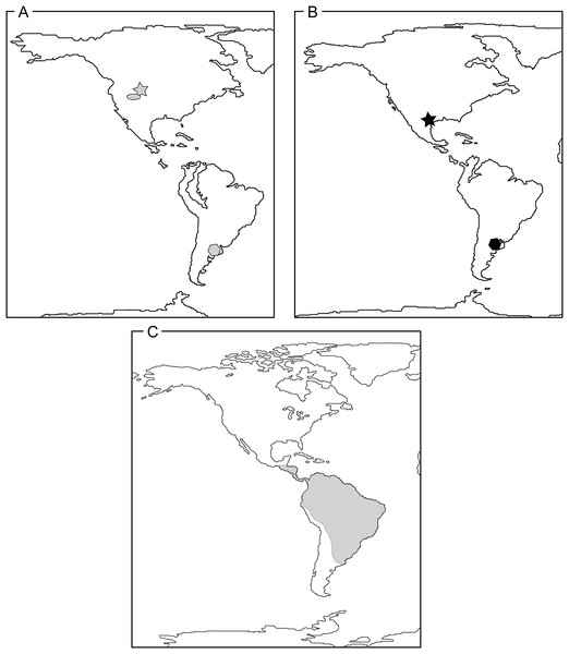 Reconstructions of continental arrangements in the Western Hemisphere depicting known Caimaninae distribution through time.