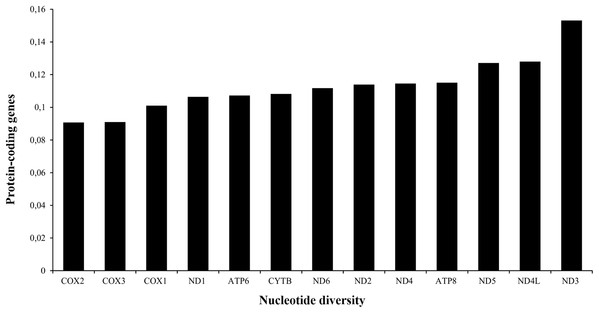 Nucleotide diversity of the PCGs in the mitogenomes of Liolaemus species.