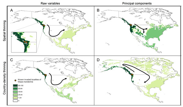 Results from simulations of the potential dynamics of invasion of Vespa mandarinia in North America.