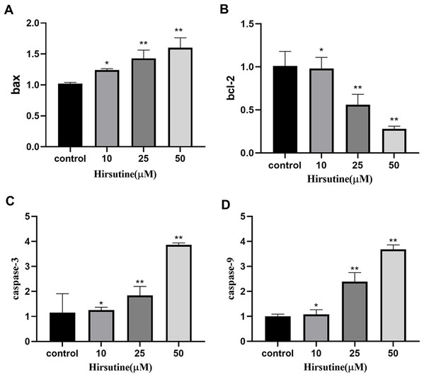 The bax/bcl2, caspase-3/9 mRNA in Jurkat Clone E6-1 cells after treatment with different doses of hirsutine. After 48 h treatment by different doses of hirsutine, bax/bcl2, caspase-3/9 mRNA in the Jurkat Clone E6-1 cells were measured by qPCR.