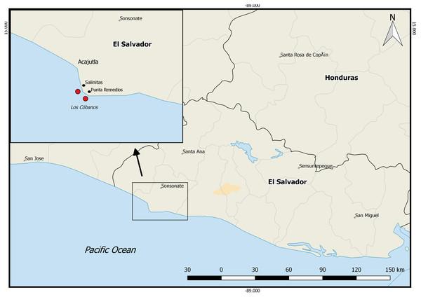 Pacific coast of El Salvador.
