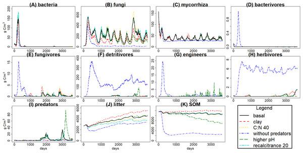 C pools daily biomass averages under different scenarios.