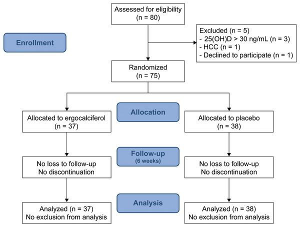 Screening, randomization, and follow-up.