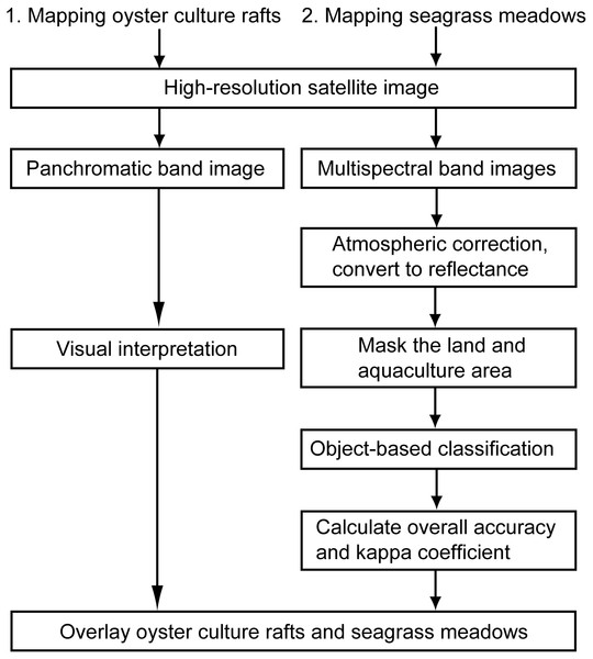 Flowchart of the analysis procedure for the mapping of oyster culture rafts and seagrass meadows using high-resolution satellite images.